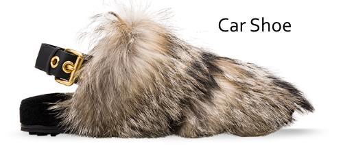 carshoe